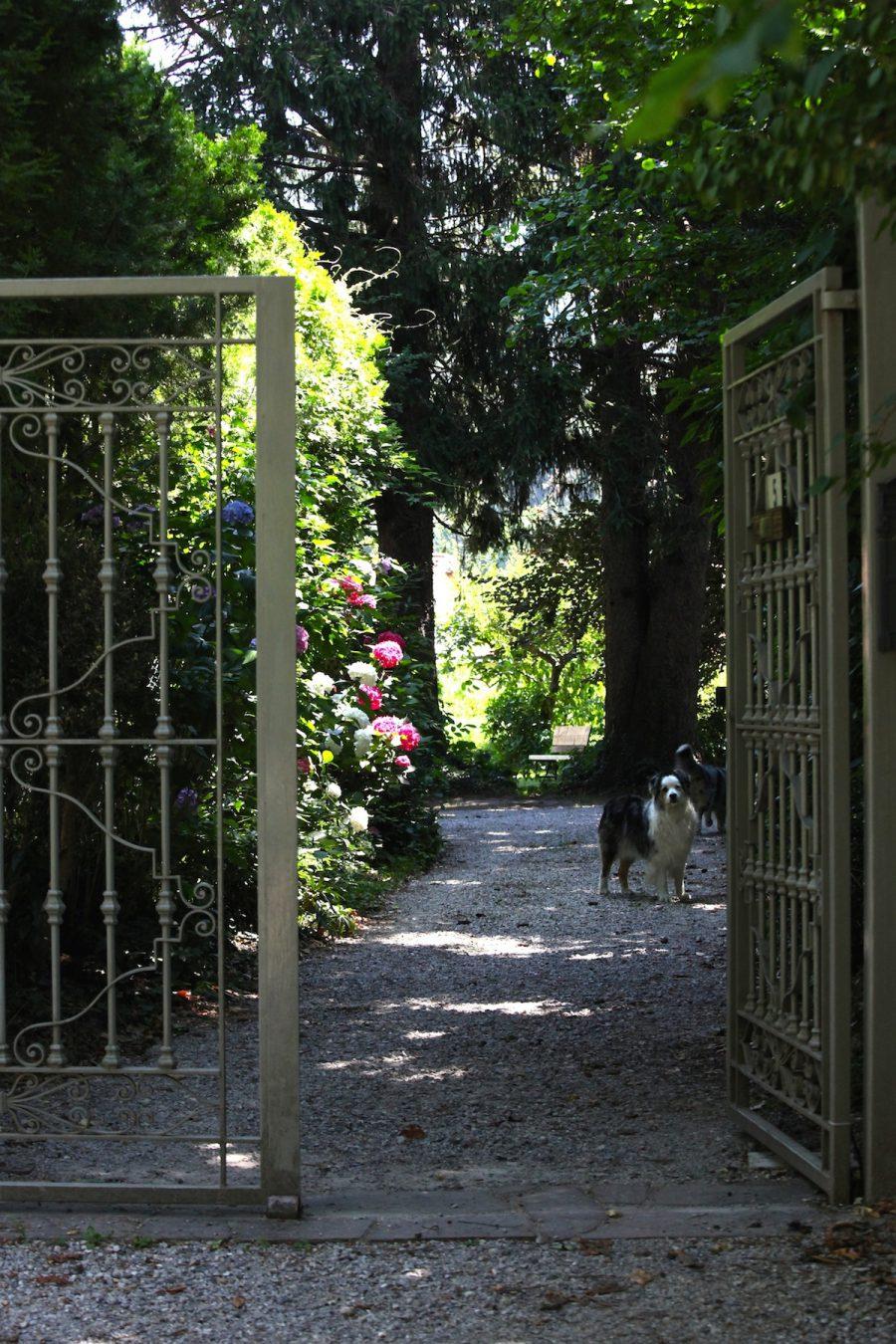 L'entrata in giardino
