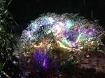Albero di Natale sotto la neve a Casa Giacconi Bed and Breakfast a Asso, vicino Bellagio